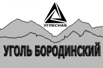 Уголь Бородинский бурый ,марки 2БР (рядовой)